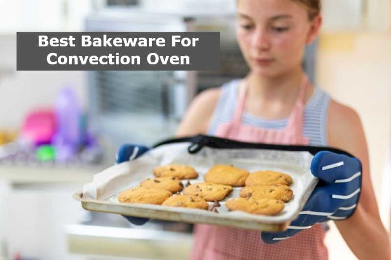 Best Bakeware For Convection Oven